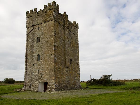 Ballyhealy Castle